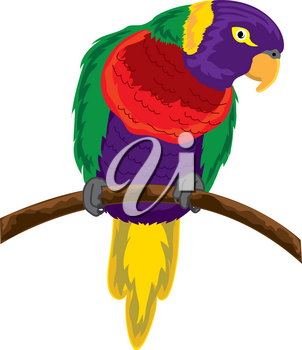 Clip Art Illustration of a Colorful Parrot