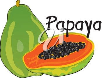 Clip Art Illustration of a Papaya