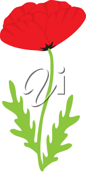Royalty Free Clipart Illustration of a Red Poppy