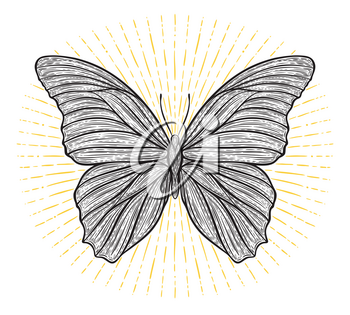 Stylized ethnic boho butterfly with shining lights effect isolated on white. Decorative doodle vector illustration. Perfect for postcard, poster, print, greeting card, t-shirt, phone case design