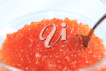 image of red caviar in a plate with the spoon