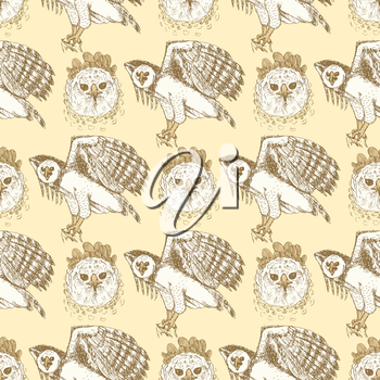 Sketch harpia eagle head in vintage style, vector seamless pattern