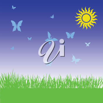colorful illustration  with grass and butterflies on spring background