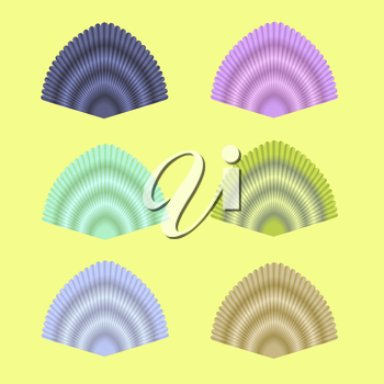 Exotic Seashell Collection Isolated on Yellow Background