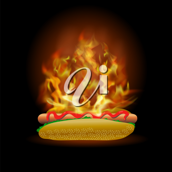 Vector Burning Fresh Hot Dog with Ketchup Isolated on Black Background
