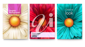 Set of spring covers with text design and bud of flowers close-up. Fashioned background with patterns of daisies for banners brochure, layout, 3D illustration. Vector template of poster.