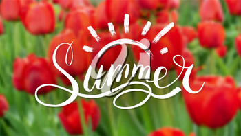 Lettering Summer on the background of a field of red tulips. Handwritten inscription, vintage script for logo, invitation, banner, poster. Custom typography. Blurred background, soft focus