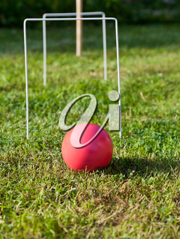 red ball ib game of croquet on green lawn in summer day