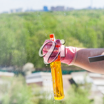 washing home window - cleaner sprays liquid from spray bottle to glass with green urban park outside in sunny spring day
