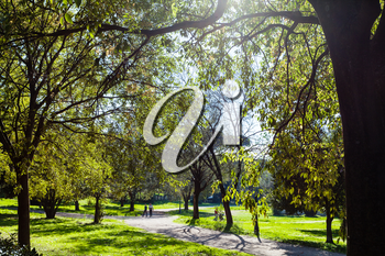 travel to Italy - green urban park of Villa Borghese gardens in Rome city in autumn
