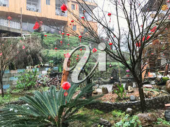 TIANTOUZHAI, CHINA - MARCH 24, 2017: red lanterns on tree on square in Tiantou village in Dazhai country of Longsheng Rice Terraces (Longji Rice Terraces) in spring rainy day