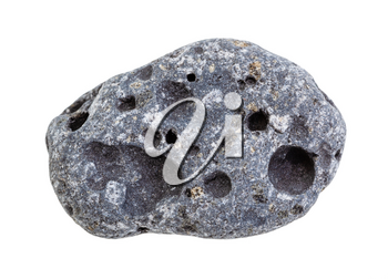 closeup of sample of natural mineral from geological collection - tumbled gray Pumice rock isolated on white background