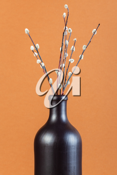 vertical pussy willow sunday (palm sunday) feast still-life - pussy-willow twigs in ceramic bottle on brown pastel background
