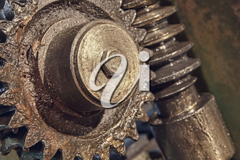 Gear wheel, cogs and screw of old industry machine taken closeup.Toned image.