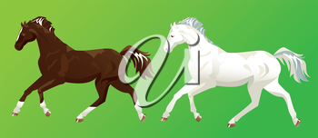 2 horses on green background