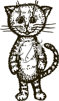 hand drawn, cartoon, sketch illustration of kitten