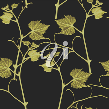Vector graphic, artistic, stylized image of seamless pattern branches of grape leaves