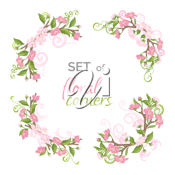 Floral ornament isolated on white background. Cherry blossoms and leaves on tree branches. Hand-drawn flourishes.