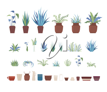 Home plants and clay pots flat vector illustrations set. Ceramic flowerpots and domestic plants, interior design elements pack. Room greenery collection isolated on white background