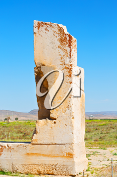 blur  in iran   pasargad the old construction  temple and grave column blur