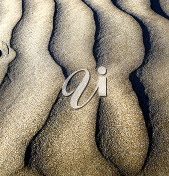 abstract texture of a  dry sand and the beach lanzarote spain