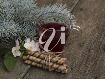 transparent cup of tea, fir-tree branch and floret, still life on