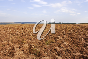 Plow. Arable land, prepared in the autumn following harvest