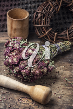 Useful dried herbs for making teas in rustic style.