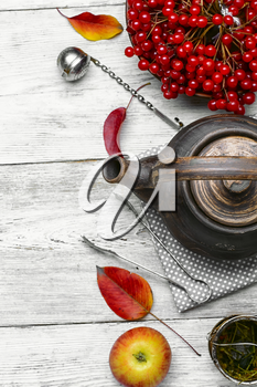 Stylish earthenware teapot with tea from medicinal autumn berries tea with viburnum
