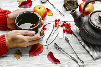 Warm cup of autumn tea with berries in his hands.Still life with kettle,berries and apple