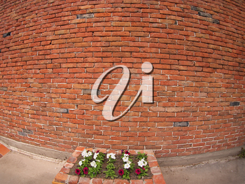 Stone wall of old red bricks and a small flower bed in front with wide-shots distortion view