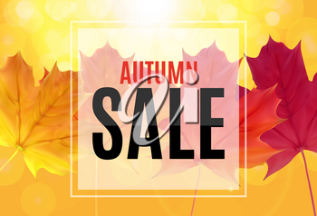 Shiny Autumn Leaves Sale Banner. Business Discount Card. Vector Illustration EPS10