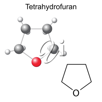 Structural chemical formula and model of tetrahydrofuran molecule, 2d and 3d illustration, isolated, vector, eps 8