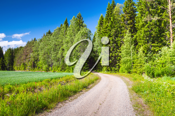 Turning empty rural road near green field under blue sky in bright summer day. Empty landscape background photo of Finland