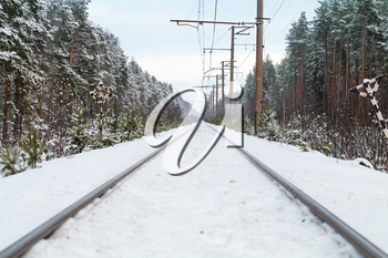 Empty railroad in winter forest perspective background