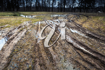 Dirty rural road with puddles and mud goes into the dark forest