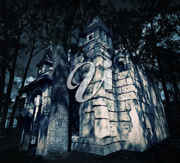 Mystery medieval castle in forest at night