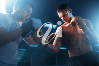 Boxer in gloves exercises with personal trainer. Boxing workout, mens sport