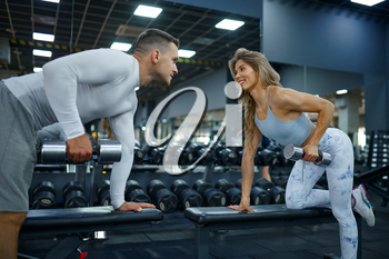 Slim couple doing exercise with dumbbells, training in gym. Athletic man and woman on workout in sport club, active healthy lifestyle, physical wellness
