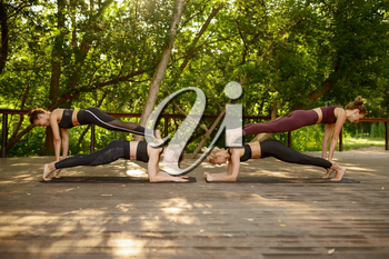 Four women doing balance exercise on group yoga training in summer park. Meditation, fit class on workout outdoors, relaxation practice. Fitness, active healthy lifestyle