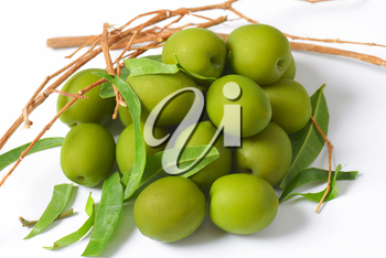 Pile of green olives with twigs and leaves