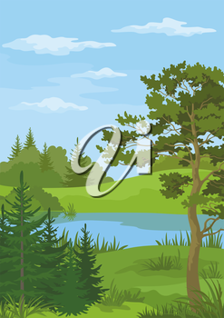 Landscape with Pine, Fir Trees and Green Grass on the Shore of a River Lake under a Blue Cloudy Sky. Vector