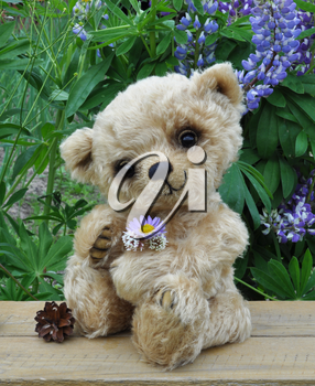 Handmade, the sewed toy: teddy bear Lucky on a little board among flowers
