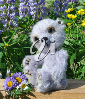 Handmade, the sewed toy: teddy-bear Chupa on a little board among flowers lupine and buttercups