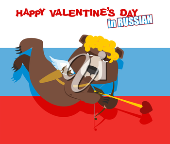 Russian bear Cupid. National Cupid for Valentines day in Russia. Happy Valentines day. Wild beast with wings and onion. Flag of Russia.