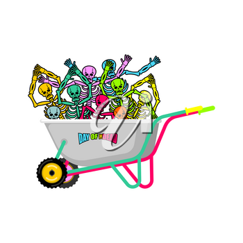 Day of the Dead Wheelbarrow and skeleton. Skull in garden trolley. mexican holiday Vector Illustration