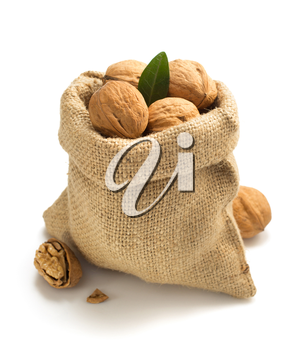 walnuts in bag isolated on white background