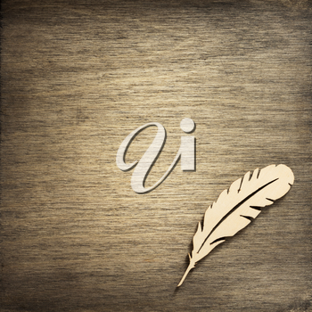 feather pen toy at wooden background surface