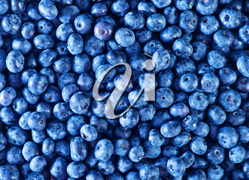fresh blueberry, blueberry on a table, blueberry background