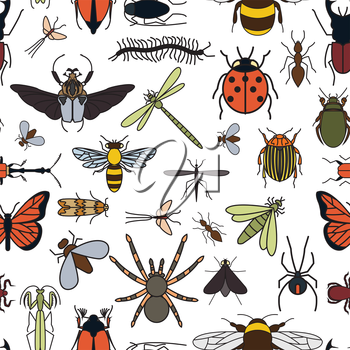 Insects seamless pattern. 24 pieces in set.  Vector illustration